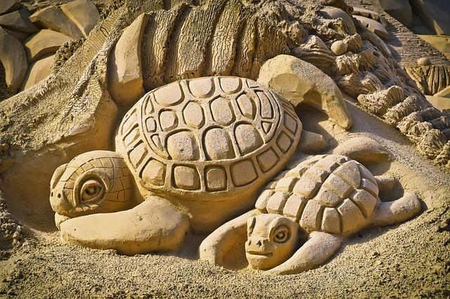 Il passo della Tartaruga
