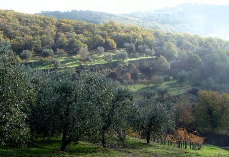 L'incantesimo dei Monti Sibillini