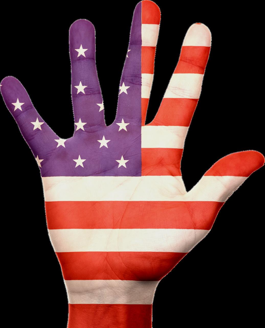 HILLARY CLINTON E' UFFICIALMENTE LA CANDIDATA PRESIDENTE USA